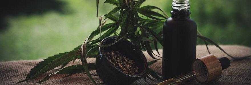 Weeds.health la plateforme du cannabis thérapeutique